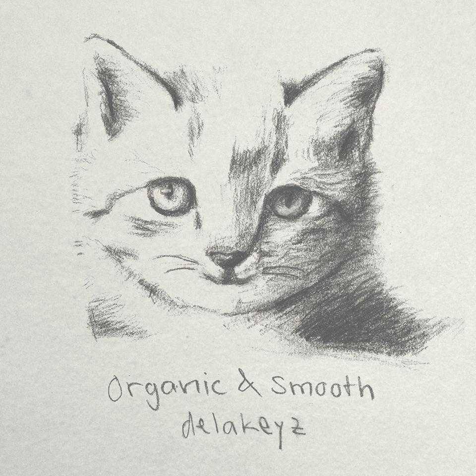 Cover von Delakeyz: Organic & Smooth EP